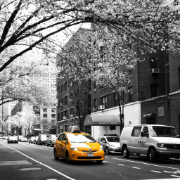 newyork yellowcar