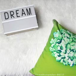 photography quotesandsayings whitebackground white cushion