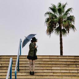 palm palmtree girl beautiful umbrella