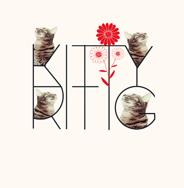 Searching #remixed #picsarteffects #digitalcollage #minimalart #clipart #dailyart #cat #kittyritig #kittyritigart  #FreeToEdit