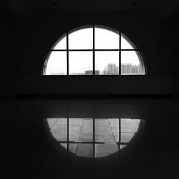 film photography art blackandwhite black