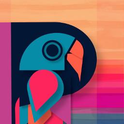 abstract art colours parrot bird